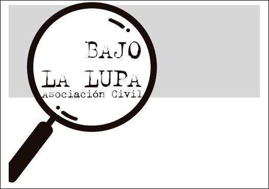 """Stolbizer presentó la ONG """"BAJO LA LUPA"""" promoviendo un recurso de amparo por inconstitucionalidad del mega decreto 27/2018"""